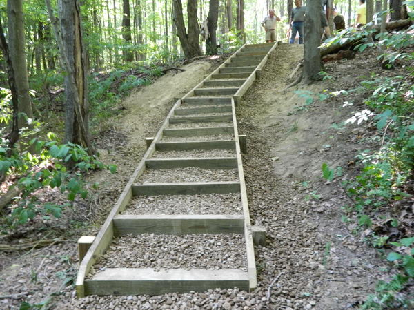 6 steps eagle scout project