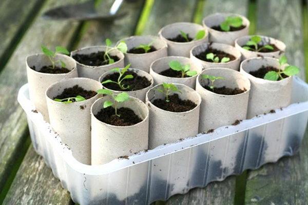 43-indoor-planters