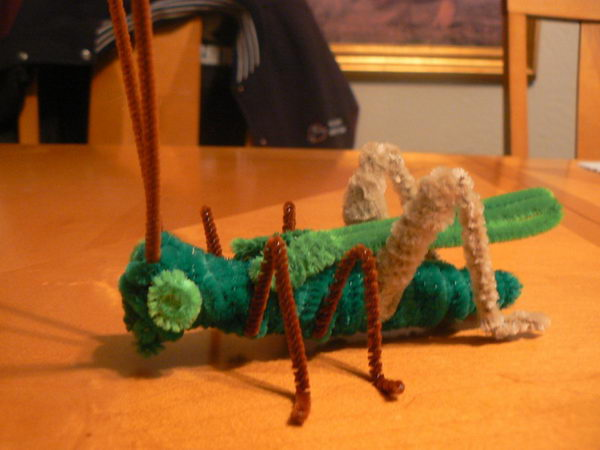 34 diy grasshopper