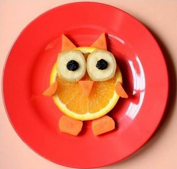 Food Arranged Like an Owl,