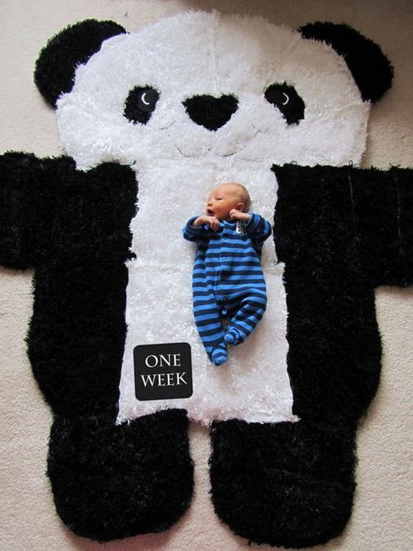 DIY Over-sized Panda Rug. Love this idea to show the growth and transformation of baby during the first year. Via