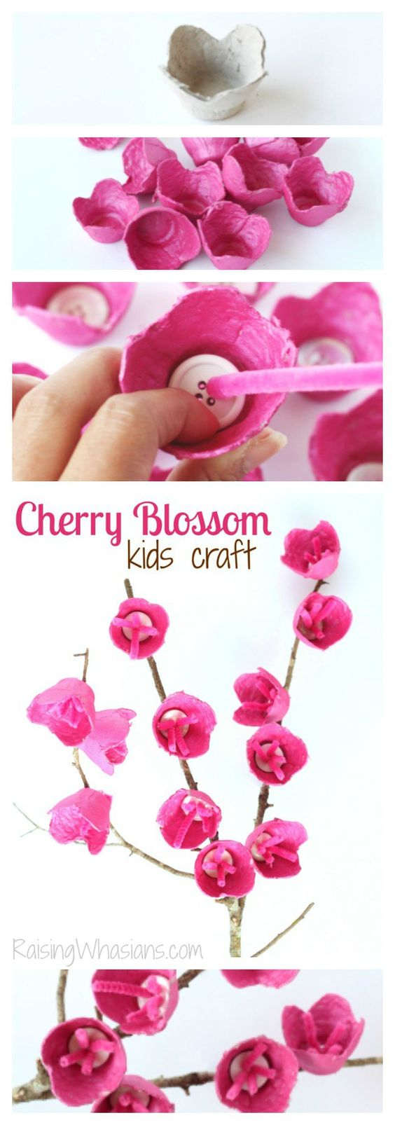 Upcycle Old Egg Cartons into Cherry Blossom Craft for Kids.