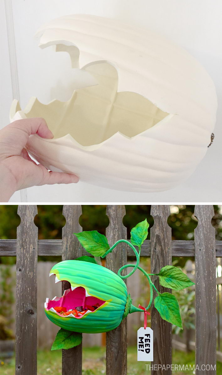 Venus Fly Trap Pumpkin Candy Holder DIY.